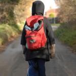 Раннее проведение терапевтического вмешательства для детей с аутизмом является наиболее эффективным по затратам в школьные годы