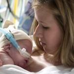 Модель кенгуру может оказаться полезной для недоношенных младенцев