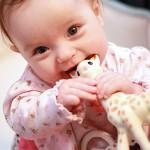 Снижение иммунитета при прорезывании зубов